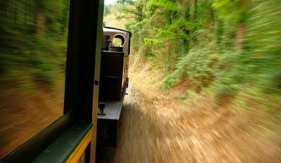 20110217213320-tren-suicidio.jpg