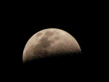 20111123205602-caida-del-pelo-quimio-claro-de-luna.jpg