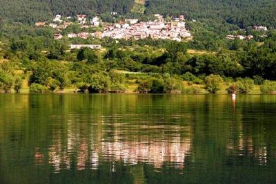 20090327231607-el-rasillo-mirandose-en-el-lago.jpg