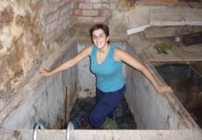20091010085046-vendimia-la-rioja.jpg