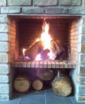20091129094137-mi-chimenea-mi-fuego-de-el-rasillo.jpg