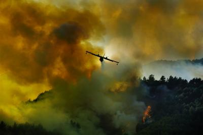20100831202108-piromano-incendio.jpg