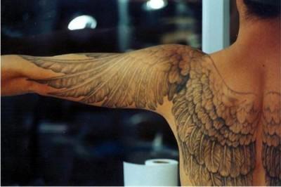 20120331135641-metamorfosis-mutacion-evolucion-tatuaje-alas.jpg